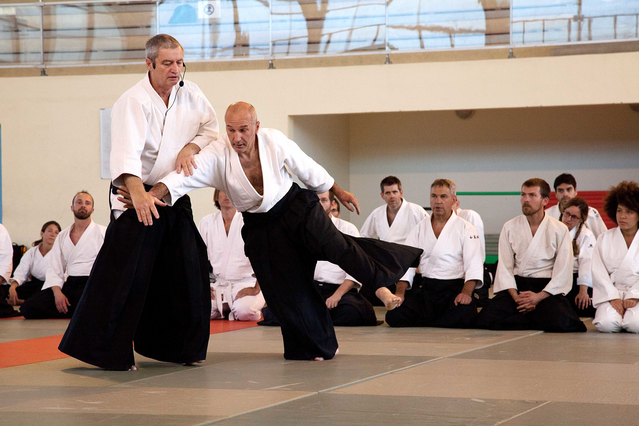 christian teissedre aikido